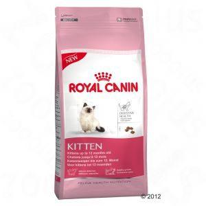 Royal_Canin_Kitt_514402d16fafb