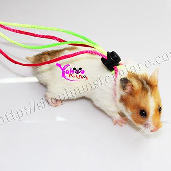 Dây dắt Hamster