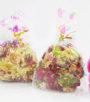 hoa hồng khô hamster web