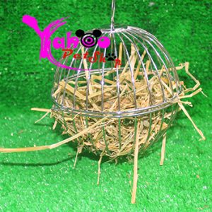 Banh cỏ thỏ bọ inox
