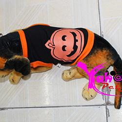 Áo halloween cho chó mèo