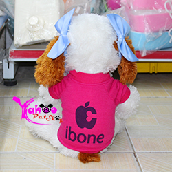Áo Ibone cho chó mèo