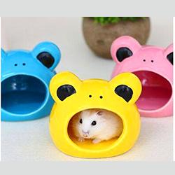 Nhà ngủ sứ ếch hamster