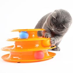 Tháp banh cho mèo