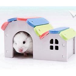 Nhà mái lượn formex hamster