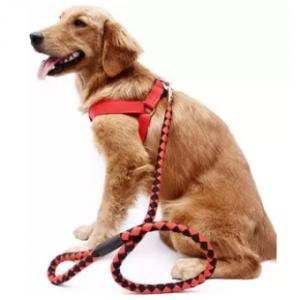 Bộ yếm huấn luyện chó nghiệp vụ