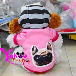 Áo chó web 3D