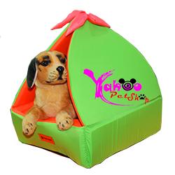 Nhà lều nơ cho chó