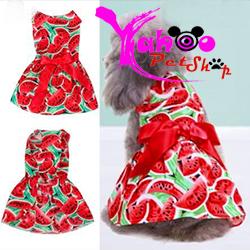 Đầm dưa hấu chó mèo