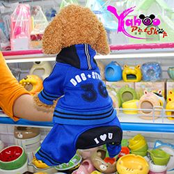 Quần áo thể thao dành cho chó mèo