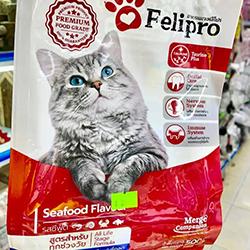 felipro cho mèo